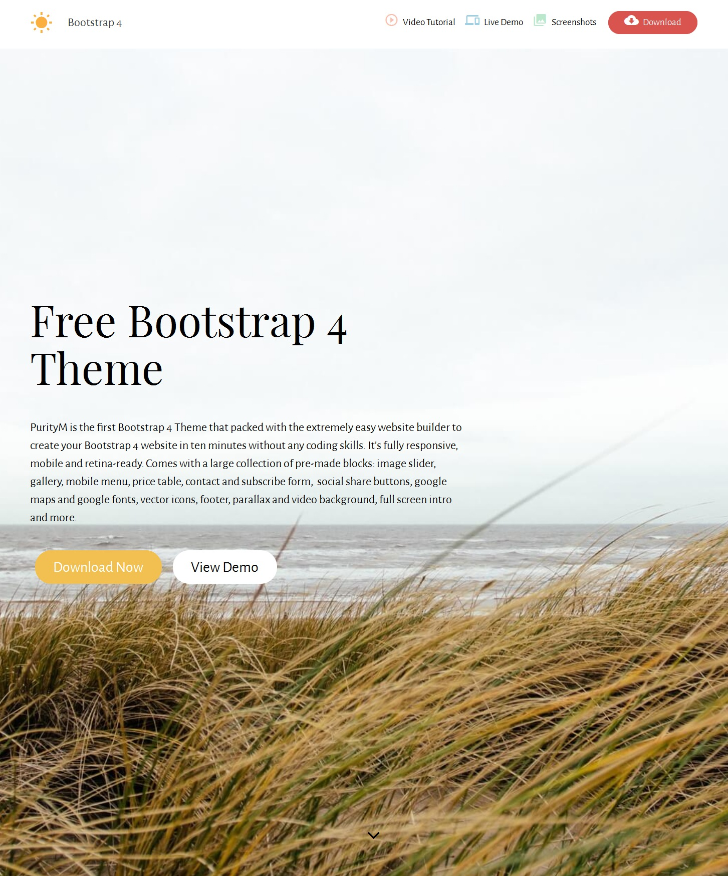 CSS3 Bootstrap Restaurant Theme