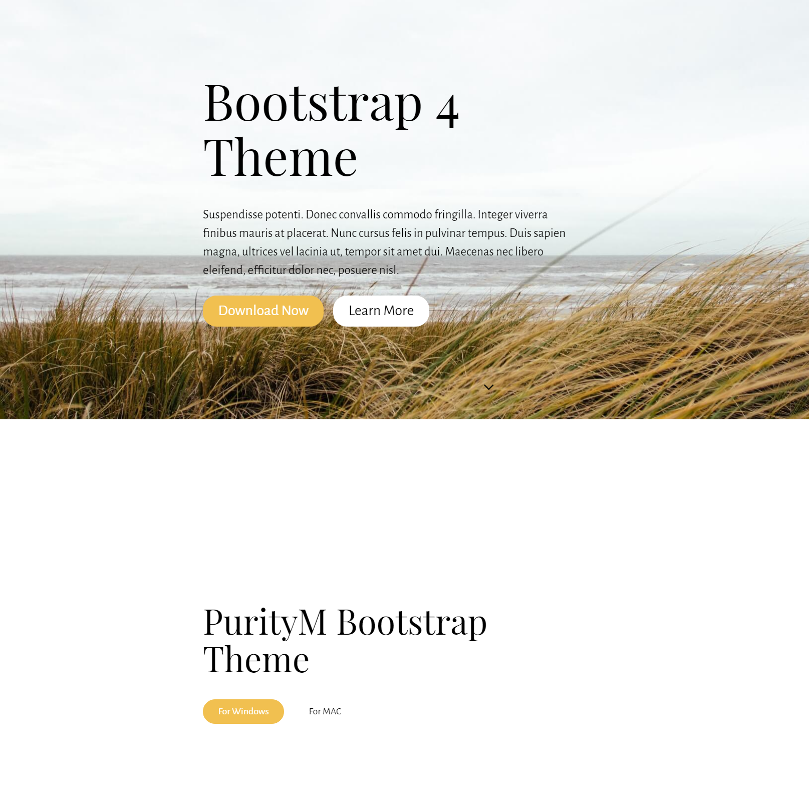 Responsive Bootstrap 4 Templates