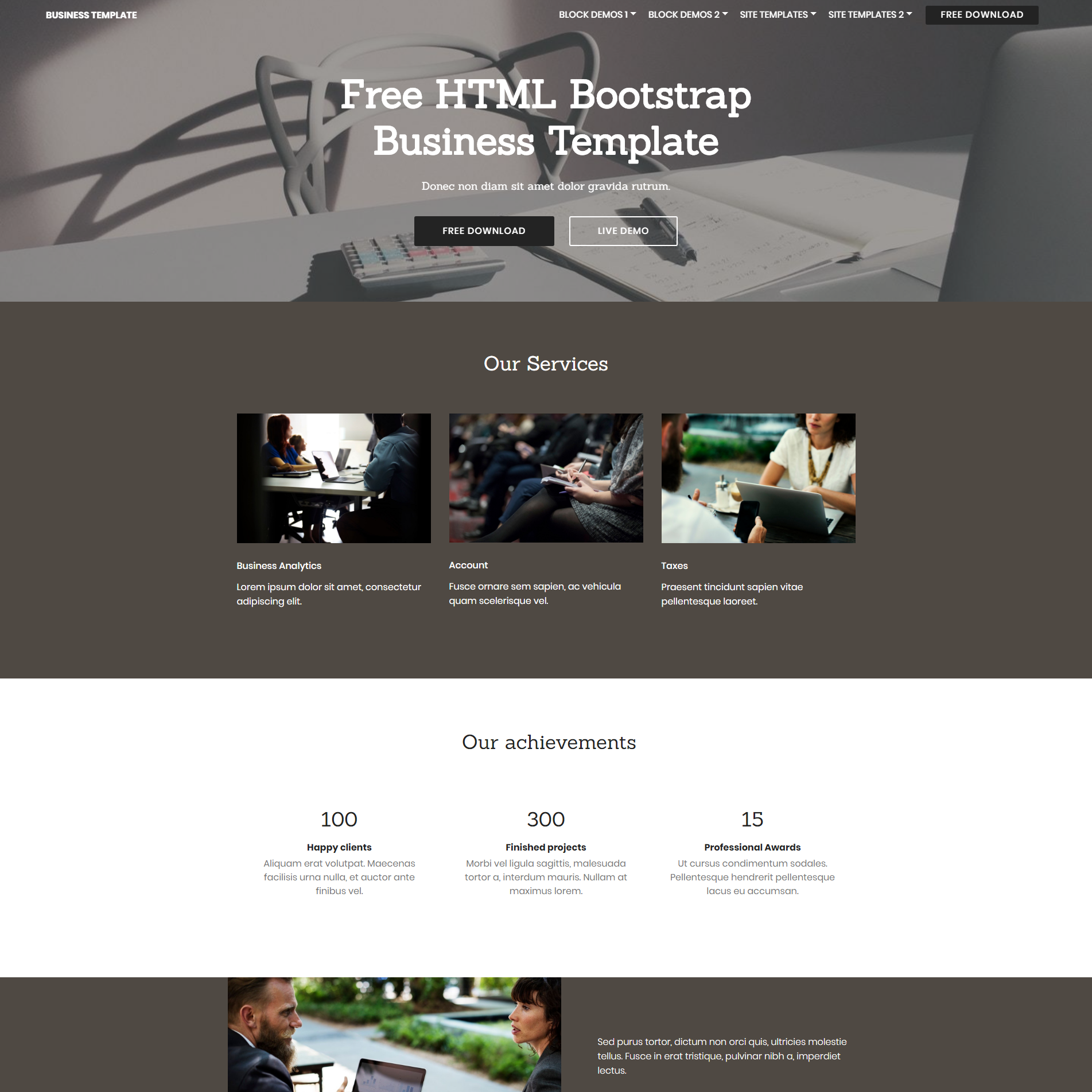 Responsive Bootstrap Business Templates
